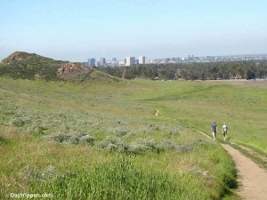 hill - quail hill