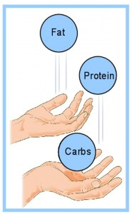 metabolic type