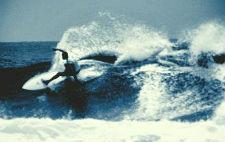 tayler surfing