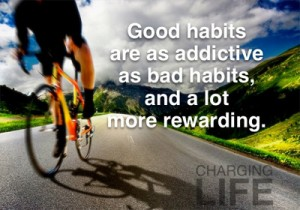 Goals, Improve Your Habits at Innovative Results - The Orange County Fitness Playground