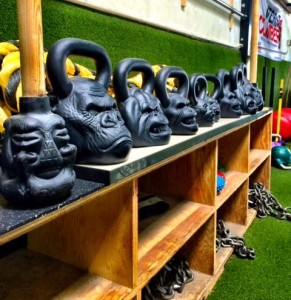 Onnit, Primal Kettlebells, Kettlebells, Mace, Quad mace, Battle Ropes, Ropes, Battling Ropes, Chains, Innovative Results, Orange County Fitness Playground